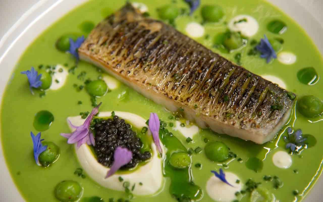 Visual of a gastronomic dish from the starred restaurant Côté Cuisine, hotel restaurant Carnac Morbihan